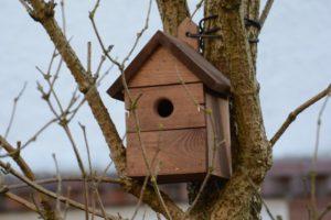 Sponsor a Habitat Box
