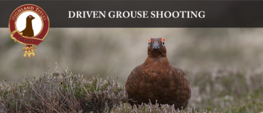 Driven Grouse Shooting – Top Video Posts