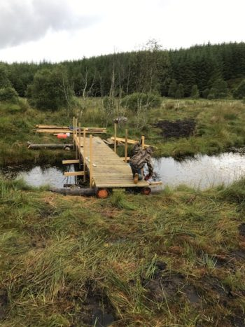 August Updates From The Reserve Bridge