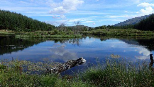 Loch Fois