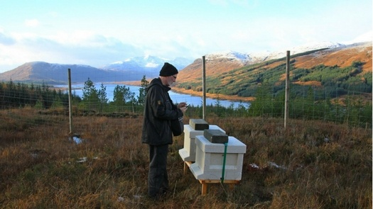 Highland Titles Nature Reserve Bee Boxes