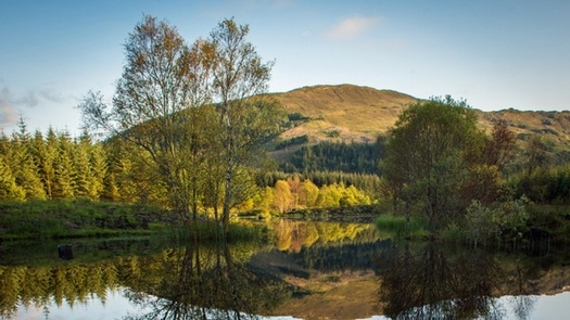 Highland Titles February Update From The Reserve Lochan