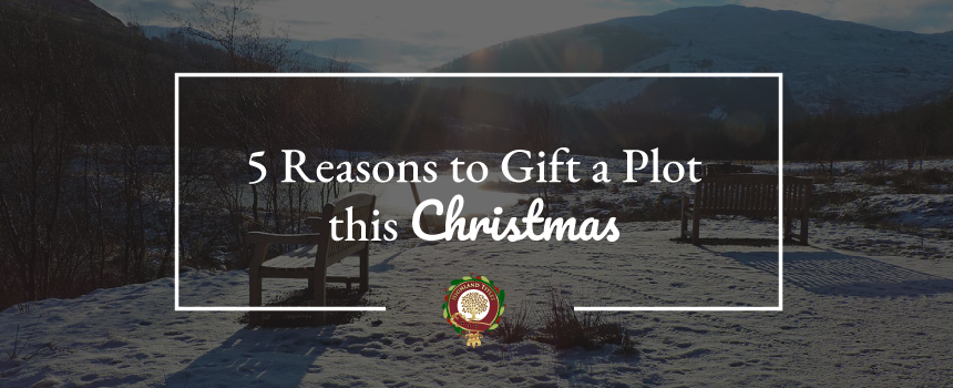 5 Reasons to Gift a Plot this Christmas