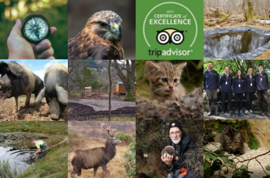 Update from the Reserve – December 2018