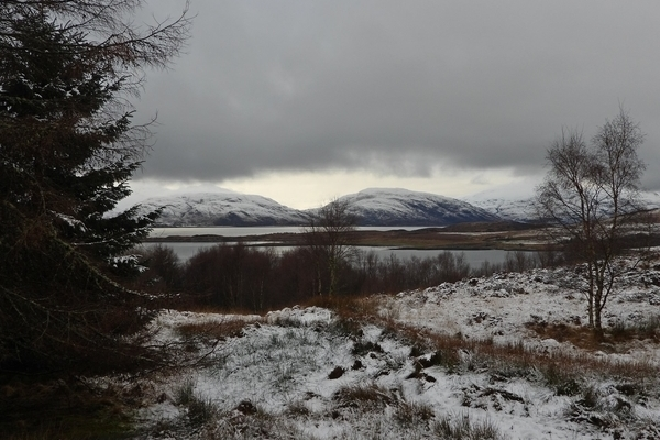 Picture of the Nature Reserve covered in snow