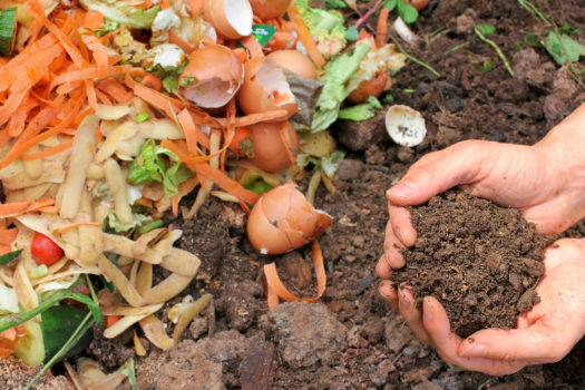 Brief Guide To Composting