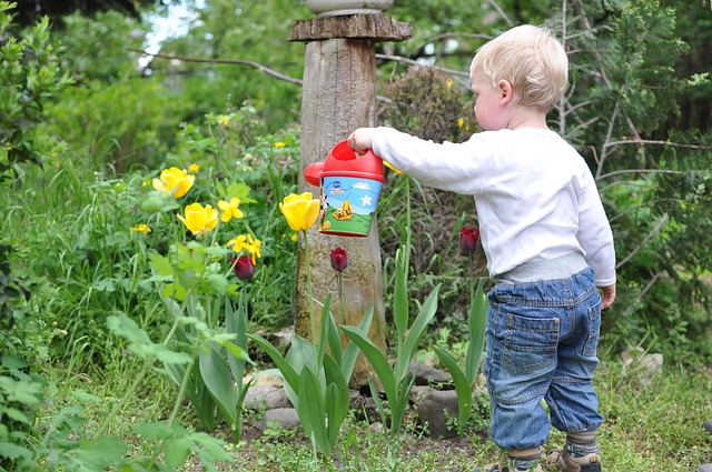 Kid watering flowers