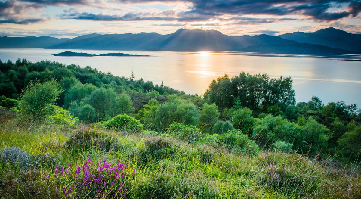 La Réserve Naturelle Highland Titles