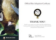 Bat Adoption Certificate Preview