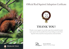 Red Squirrel Adoption Certificate Preview
